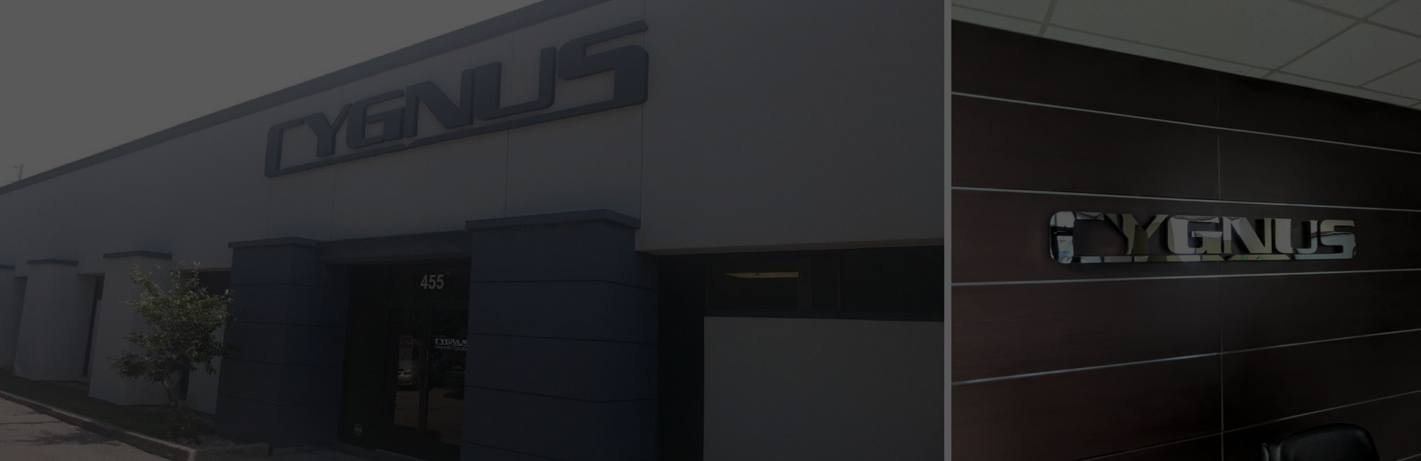 Electronics Manufacturer Cygnus Corporation